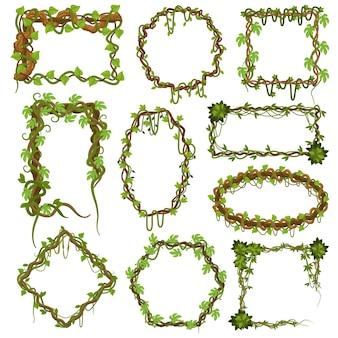 Quadros de videiras liana. plantas da floresta tropical escalando com folhas, bordas de plantas de cipós na selva