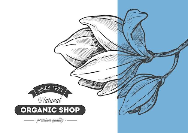 Qualidade premium de loja orgânica, design de banner com botão de flor. ingredientes naturais e estilo de vida saudável, biomateriais ecológicos, mercado ecológico. contorno de esboço monocromático, vetor em estilo simples