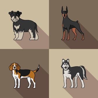 Quatro cães, mascotes, animais, raça, personagens, ilustração vetorial, desenho