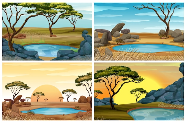 Quatro cenas de campo de savana com poço de água