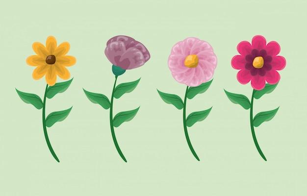 Quatro flores coloridas em verde
