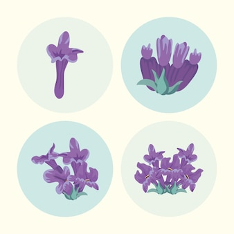 Quatro flores de lavanda