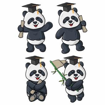 Quatro ilustrações de formatura de panda