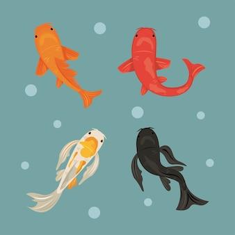 Quatro peixes koi