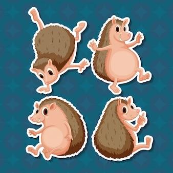 Quatro posições do mesmo ouriço no fundo azul