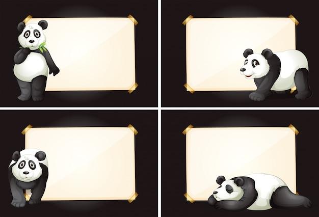 Quatro quadros com bonitos ursos de panda