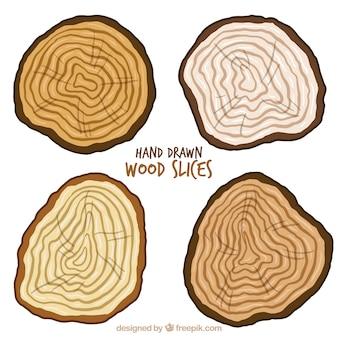 Quatro troncos de árvores