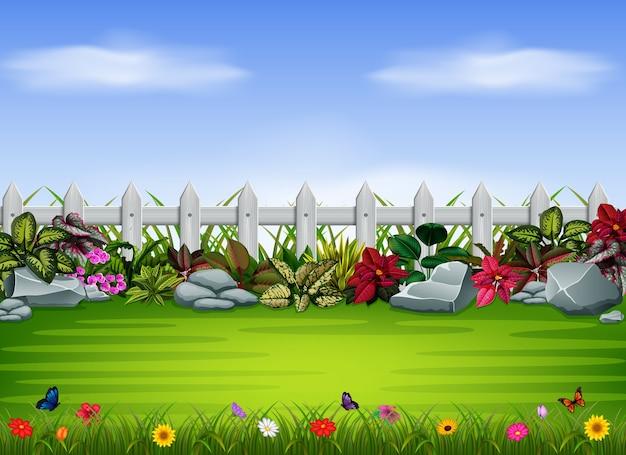 Quintal com a cerca e pedra grande