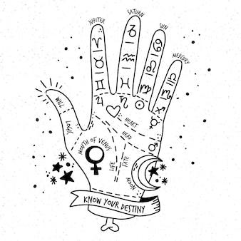 Quiromancia com signos do zodíaco Vetor grátis
