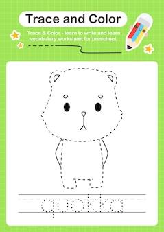 Quokka trace e traço de planilha pré-escolar em cores
