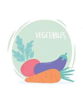 Rabanete e berinjela de cenoura vegetal orgânica dos desenhos animados frescos