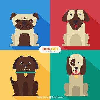 Raças de cães engraçados definido