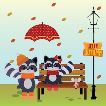 Raccoon_autumn em meu coração