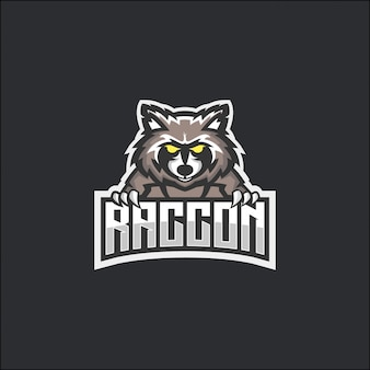 Raccoon e-sport logo conceito