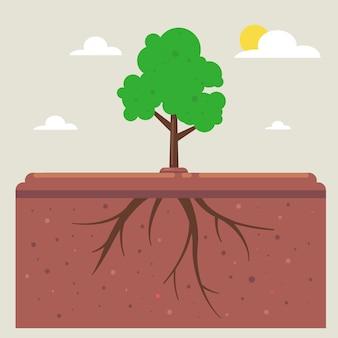 Raízes de árvores sob o solo