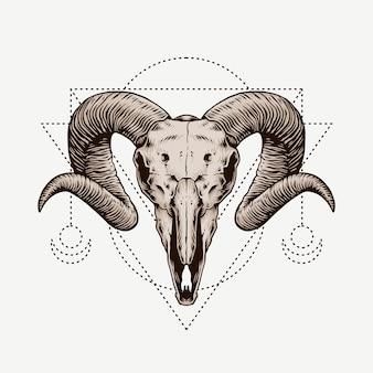 Ram skull. boho e hipster mão ilustrações desenhadas.