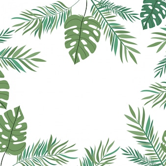 Ramifique com a folha do verão no fundo branco