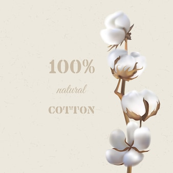Ramo de algodão em um fundo bege e texto 100% algodão natural.