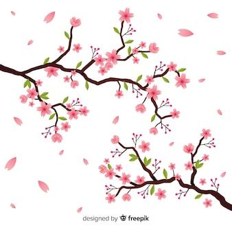 Ramo de flor de cerejeira desenhado a mão