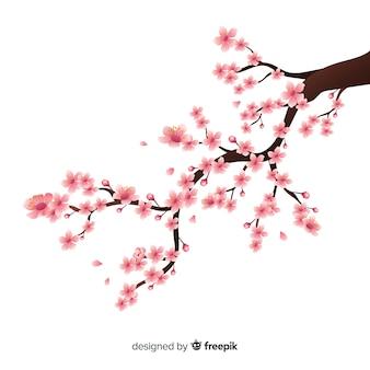 Ramo de flor de cerejeira realista