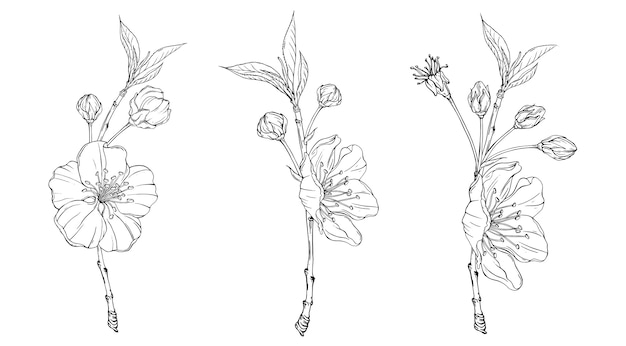 Ramo de flor de primavera