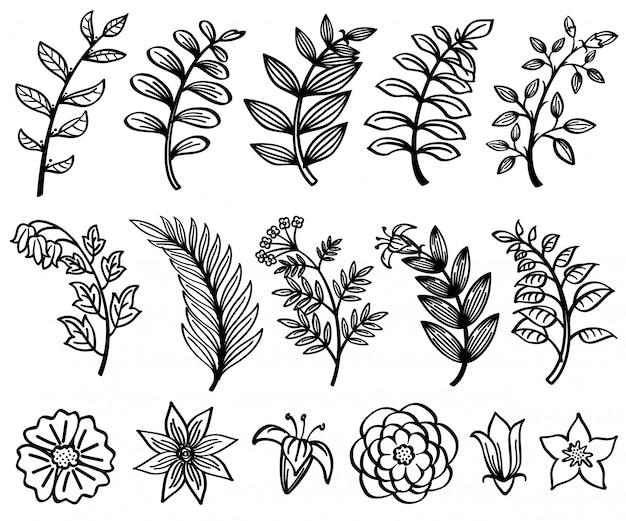 Ramo de mão desenhada esboço e folhas elemento decorativo natureza floral de vetor.