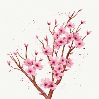 Ramo em aquarela de flor de sakura