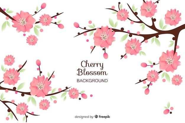 Ramos de flor de cerejeira de mão desenhada
