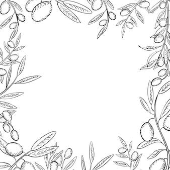 Ramos de oliveira com moldura de contorno de frutas