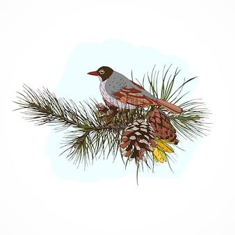 Ramos de pinheiro com pássaro