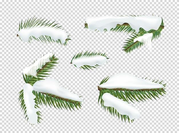 Ramos de pinheiro verdes com clipart do vetor da neve.