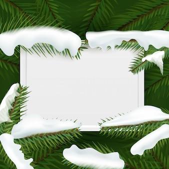 Ramos do verde da árvore de natal com copyspace branco.