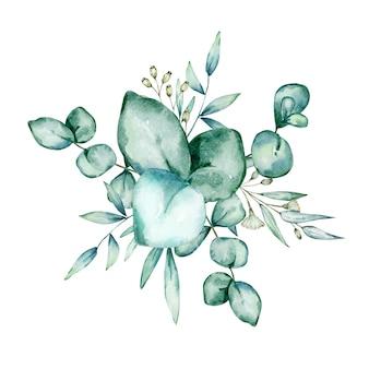 Ramos e folhas de eucalipto em aquarela isolados