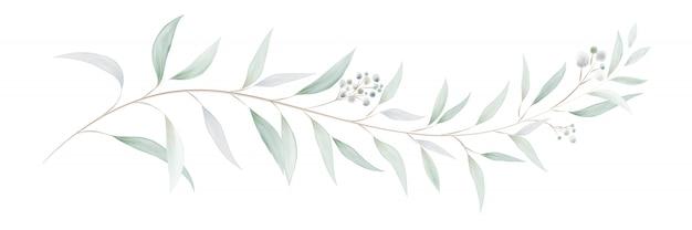 Ramos e folhas de eucalipto em aquarela