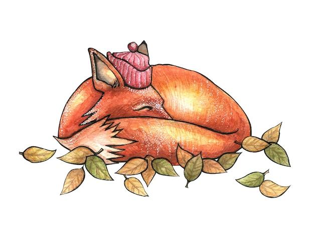 Raposa vermelha deitada enrolada em um chapéu vermelho entre folhas de outono
