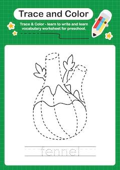 Rastreamento de erva-doce e planilha pré-escolar colorida para crianças praticarem a escrita