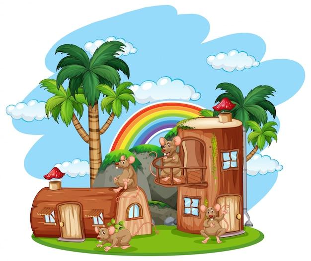 Rato a casa de madeira