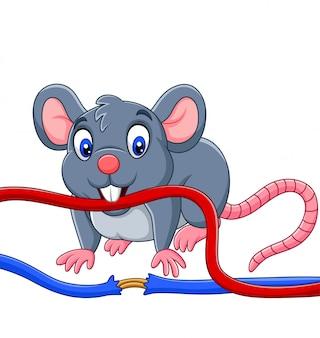 Rato dos desenhos animados, mordendo o cabo