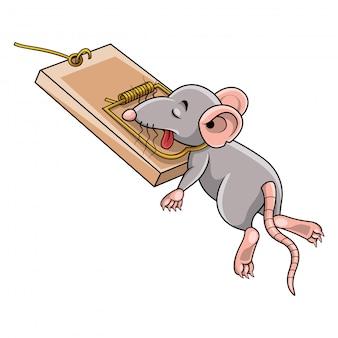 Rato dos desenhos animados morto em uma ratoeira