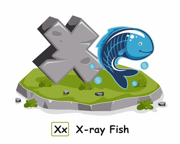 Ray fish rock pedra alfabeto animais letra x