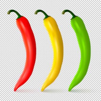 Realista vermelho amarelo e verde pimenta natural quente conjunto isolado modelo de design