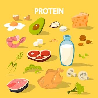 Recolha de alimentos ricos em proteínas. queijo