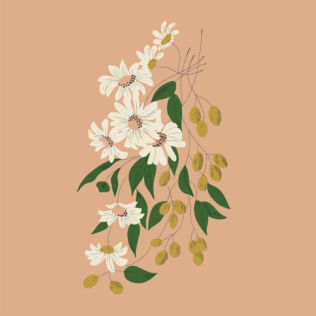 Recursos gráficos da ilustração do desenho botânico da flor branca e das azeitonas vetoriais
