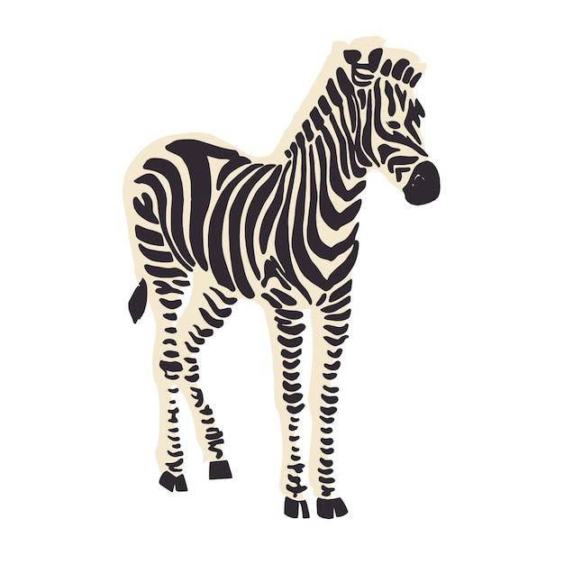 Recursos gráficos de ilustração de animais vector zebra