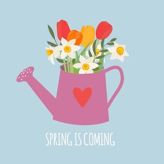 Regador de jardim com flores da primavera, tulipas e narcisos