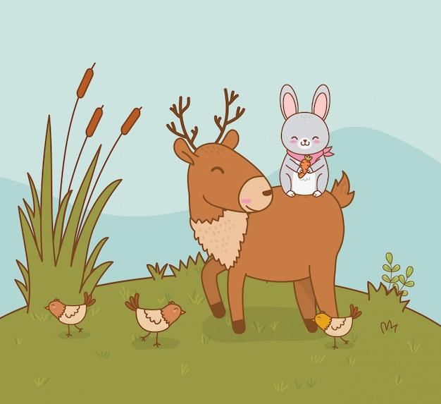Rena bonito e coelho nos personagens da floresta de campo
