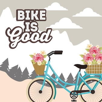 Reparação de bicicletas e loja