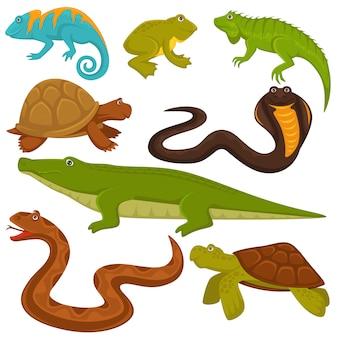 Répteis e animais reptilianos tartaruga, crocodilo ou camaleão e lagarto conjunto de cobra