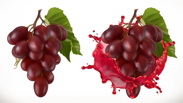 Respingo de vinho tinto e uvas. frutas frescas