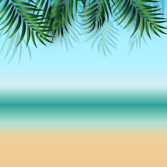 Resumo de verão com folhas de palmeira, praia e beira-mar. ilustração